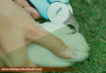 Best Professional Dog Nail clippers